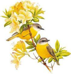 Yellow Birds - Cross stitch pattern pdf format