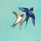 Image of Barn Swallows