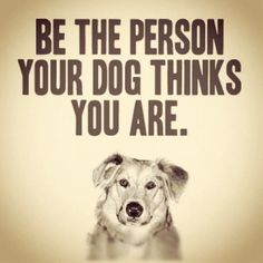 Monday wisdom from our canine companions: Be the person your dog thinks you are. My dog thinks I'm incredibly lovable, strong, capable, and awesome. and today I'm making a point to believe her. ❤️ Who does your dog think you are? Great Quotes, Quotes To Live By, Life Quotes, Inspirational Quotes, Motivational, Clever Quotes, Dog Quotes Love, Fantastic Quotes, Animal Quotes