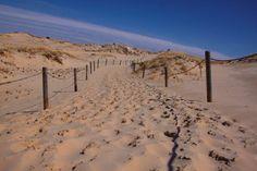 Czołpino dune