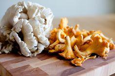 ... about Vegan Mushrooms on Pinterest | Mushrooms, Portobello and Vegans