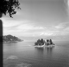 Corfu Greece, Cypress Trees, Old Photos, The Past, Shots, Photographs, Journey, Europe, River
