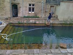 Build Fish Pool Design With Natural Style swimming pool ideas Fish Pool, Natural Swimming Ponds, Natural Pond, Swimming Pools Backyard, Ponds Backyard, Swimming Pool Designs, Indoor Swimming, Pool Spa, Pond Water Features