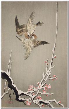 Sparrows and Plum Blossoms Ohara Shōson (Koson) (Japan, 1877-1945) Japan, 1925 Prints; woodcuts Color woodblock print