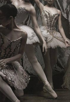 These ballet dresses are so elegant, and whimsical. I am whisked away by the detail.