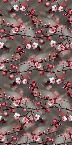 Wall Paper Nature Blumen Ideas For 2019 Tumblr Wallpaper, Floral Wallpaper Iphone, Flower Background Wallpaper, Cute Wallpaper Backgrounds, Colorful Wallpaper, Floral Wallpapers, Background Images, Fb Wallpaper, Vintage Flower Backgrounds