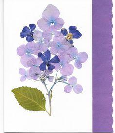 Real Pressed Flower Greeting Card  Birthday by SmileWithFlower