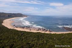 Nature's Valley is a small, coastal town surrounded by a big beach, big mountains, a big forest and a big river (the Grootrivier). (Vincere's town in my novel. River Mouth, Big Mountain, Otter, Hiking Trails, South Africa, Coastal, Gems, Adventure, Mountains