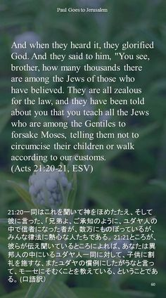 "And when they heard it, they glorified God. And they said to him, ""You see, brother, how many thousands there are among the Jews of those who have believed. They are all zealous for the law, and they have been told about you that you teach all the Jews who are among the Gentiles to forsake Moses, telling them not tocircumcise their children or walk according to our customs.(Acts 21:20-21, ESV)21:20一同はこれを聞いて神をほめたたえ、そして彼に言った、「兄弟よ、ご承知のように、ユダヤ人の中で信者になった者が、数万にものぼっているが、みんな律法に熱心な人たちである。…"