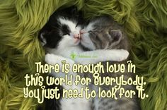 There is Enough Love in This World for Everybody | via @lifeadvancer #quotes