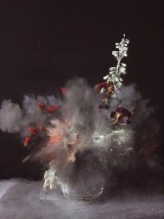 Ori Gersht, Time after Time 26