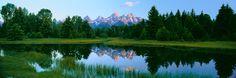 Grand Teton National Park, WY Mural - Alain Thomas| Murals Your Way