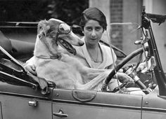"""1918 Chicago: Delbert Griffin Wickman (aka """"Delly"""") driving his owner, Mrs. Olga Rodin Wickman, to the market. Delly later went on to start Greyhound Bus Lines in 1926."""