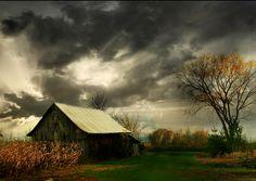 Splendiferous: Photo