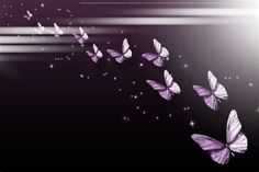 Purple Butterfly Wallpaper ·① WallpaperTag