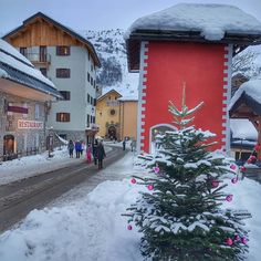 French Mountains – SWITZERLAND Switzerland, Travel Inspiration, Christmas Tree, Posts, French, Mountains, Holiday Decor, Outdoor, Home Decor