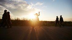 Takie widoki, to tylko na plantacji - po pracy... Ach! #berrygood #borówkowo #berries #berry #grupa #wspólnie #plantatorzy #plantacje #radosczzycia #popracy #radosc #kochamzycie #zachódsłońca #borókiwsłońcu #sun #fun