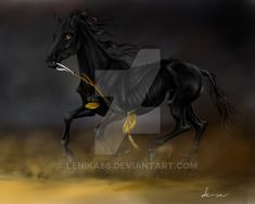 Black Pony by Lenika86