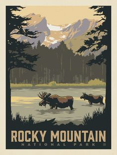 Anderson design group - 60 american national parks - rocky m Retro Poster, Gig Poster, American National Parks, Kunst Poster, Park Art, Rocky Mountain National Park, Vintage Travel Posters, Grafik Design, Vintage National Park Posters