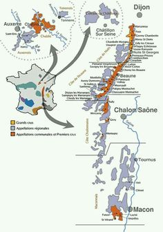 Bourgogne wine map.  A nice starter map, raising as many questions as it answers!