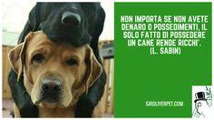 Non importa se non avete denaro o possedimenti, il solo fatto di possedere un cane rende ricchi'. (L. Sabin)