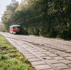 Трамвай-садовник by Vi_Cha