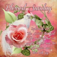 sunday blessings/facebook | Blessed Sunday Pictures, Photos, and Images for Facebook, Tumblr ...