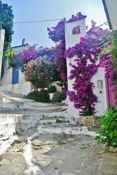 Old Chora, Alonissos island, Sporades, Greece Beautiful Islands, Beautiful Places, London Blog, Skiathos, Greek Wedding, Flowering Trees, Adventure Is Out There, Greek Islands, Dream Vacations