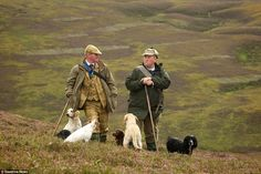 Grouse keepers discuss their plan for the day on sweeping moorland near Oban in Scotland as their dogs wait patiently for the day's action American Cocker Spaniel, English Cocker Spaniel, Grouse Hunting, Pheasant Hunting, Country Life, Country Living, Northern England, British Countryside, Country Fashion