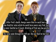 George & Fred... after Molly, they were my favorite Weasleys