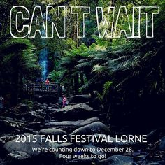 Let the Falls Festival countdown begin! We cant wait! Are you as exciting as we are?? #lovelorne #lorne #happy #greatoceanroad #officialfallsmusicandarts #fallsfestival #blocparty #weirdal #birdsoftokyo #paulkelly #dunerats #djyoda #rufus #summer #photooftheday #instagood @fallsfestival by lornelarder