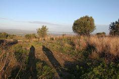 Il giorno ormai scompare: le ombre