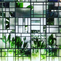 #arquitectura con plantas: vivienda y restaurante en Ciudad Ho Chi Minh de Kientruc O Studio  Hiroyuki Oki . . . #plants #plantas #picoftheday #love #like #green #verde #naturaleza #nature #interiors #deco #decoracion #inspiration #inspiracion #belleza #foliage #wintergarden #invernadero #plantbased #plantpower #plantsofinstagram #blogger #happy #pilea #monday #lunes #architecture #architecturephotography #archlovers