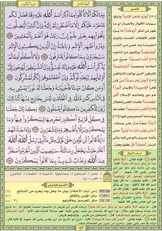 سورة الأنعام / صفحة ١٤٣ / مصحف التقسيم الموضوعي للحافظ المتقن
