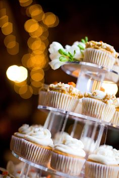 Nip Baking Cups Cupcakes Liners Products Are Sold Without Limitations Over The Top Elegant Ivy Black/white 50 Ct
