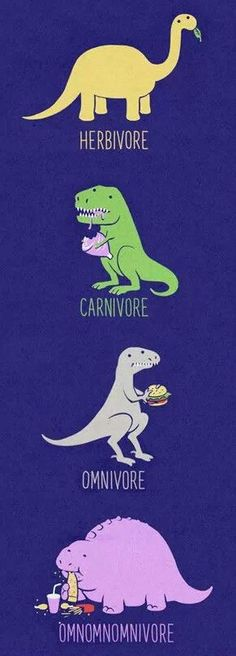 Different kinds of dinosaurs.