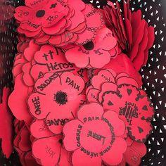 Image may contain: flower  #Regram via @www.instagram.com/p/B4xO-WvhUpr/ Flowers, Image, Instagram, Socialism, Social Studies Activities, Peace, Royal Icing Flowers, Flower, Florals