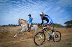 Just horsing around ; Outdoor Recreation, Aviation, Bicycle, Horses, Bike, Bicycle Kick, Bicycles, Horse, Aircraft
