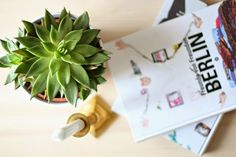 cactus, brass, plant, books, berlin Berlin, Cactus, Brass, Plants, Prickly Pear Cactus, Copper, Plant, Planting, Planets