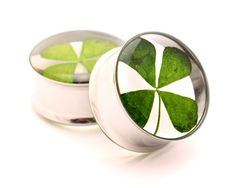Embedded Real 4 Leaf Clover Plugs - 3/4 Inch - 19mm - Sold As a Pair Mystic Metals Body Jewelry http://www.amazon.com/dp/B0080LBX0C/ref=cm_sw_r_pi_dp_nlPTub05CB1HE