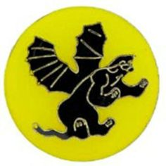 """U.S. Army 541st Airborne Infantry Regiment Pin 1"""" by FindingKing. $8.99. This is a new U.S. Army 541st Airborne Infantry Regiment Pin 1"""""""