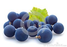 Blue Grape Berry - Download From Over 24 Million High Quality Stock Photos, Images, Vectors. Sign up for FREE today. Image: 27191239