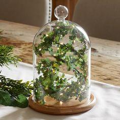 Glass Bell Jar With Holly Fairy Light Garland – ledjar Glass Bell Jar, The Bell Jar, Glass Domes, Bell Jars, Glass Dome Display, Fairy Lights In A Jar, Jar Lights, Cloche Decor, Printed Balloons