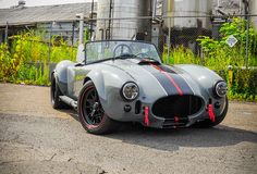 Cobra love...possibly the nicest color scheme I have seen.