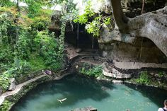 Cenote Zaci. Valladolid, Mexique Du Yucatan au Quintana Roo