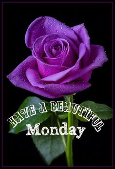Happy Monday! Have a great week! :)