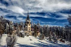 Zamek Peles, Rumunia, Zima, Las