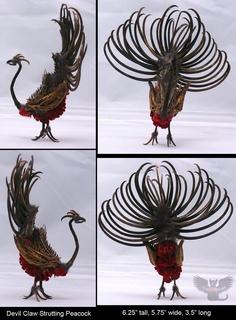 Devil Claw Peacock