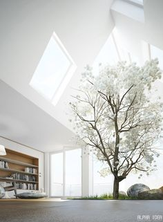 Fantastic Living Room w/Skylight for Indoor Tree~