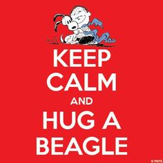 #snoopy #charliebrown #quotes